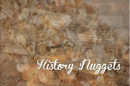 History-Nuggets